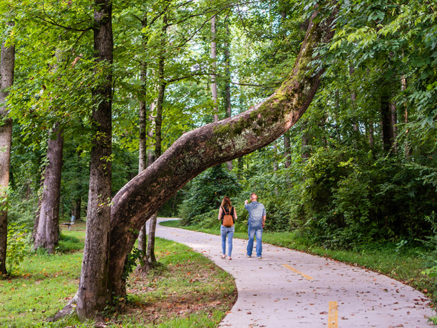 two pelple walking on a paved path ina wooded park